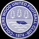 Colliers Wood United football club